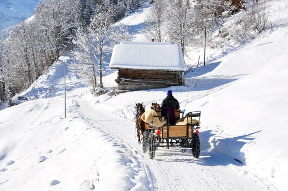 Pferdeschlittenfahrten - Winterurlaub am Hochkönig - Salzburger Land